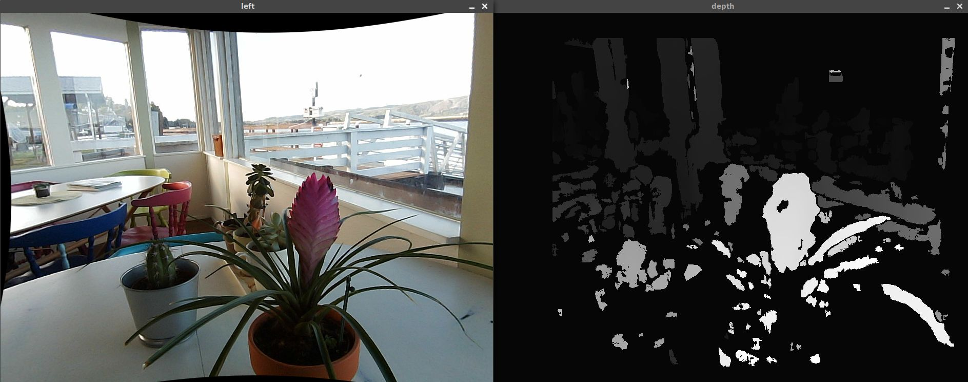 Potted plants and the corresponding depth map