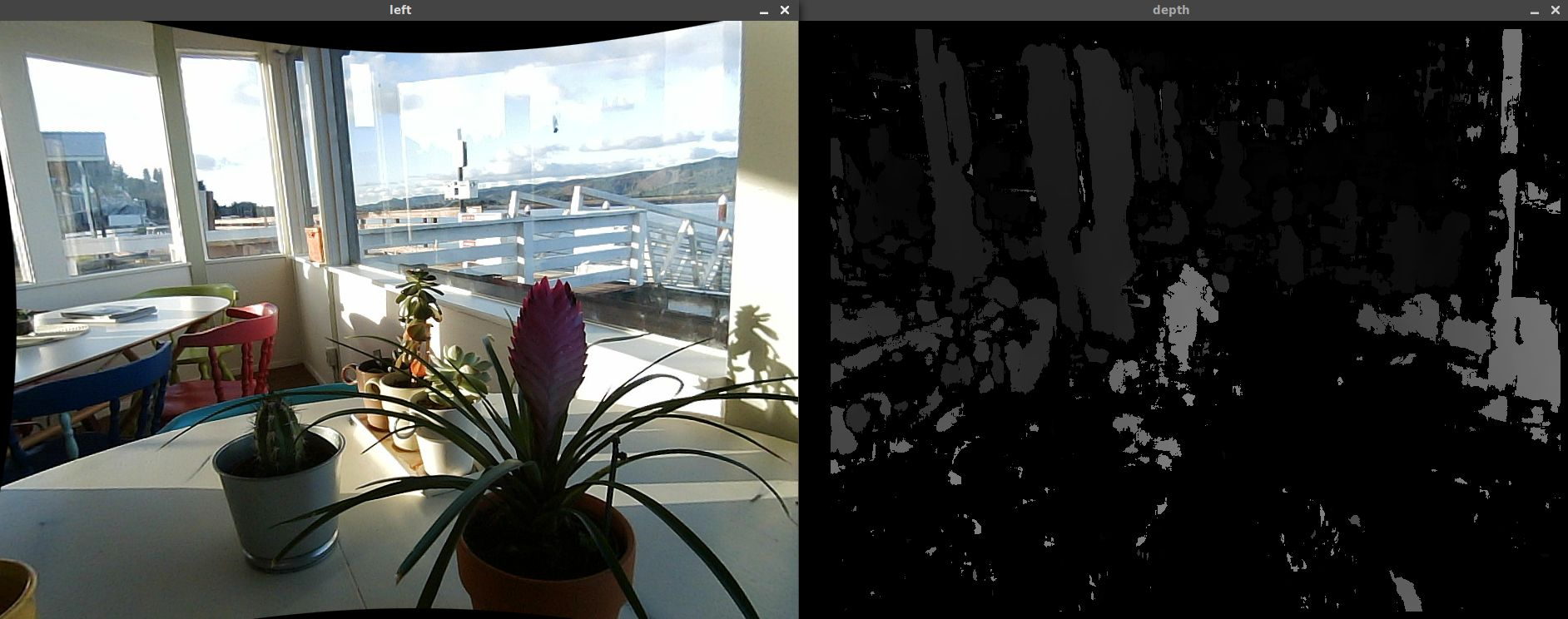 Potted plants and a noisy depth map